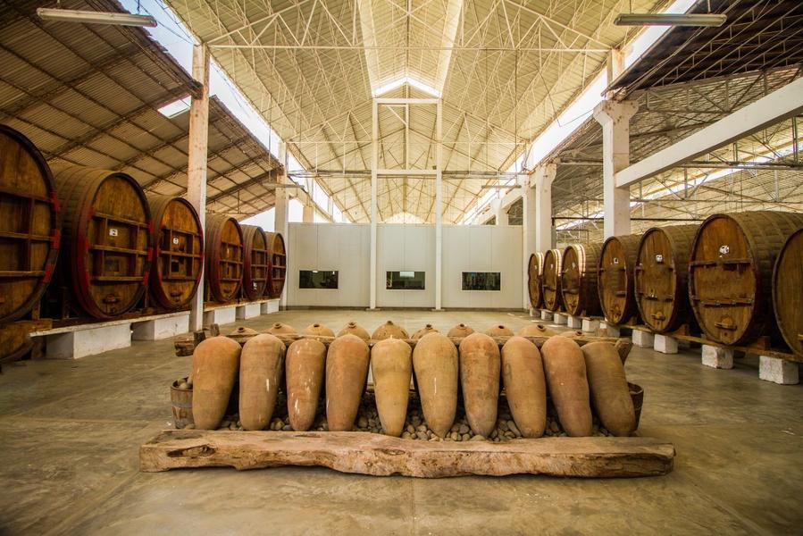 La route du pisco et du vin à Ica