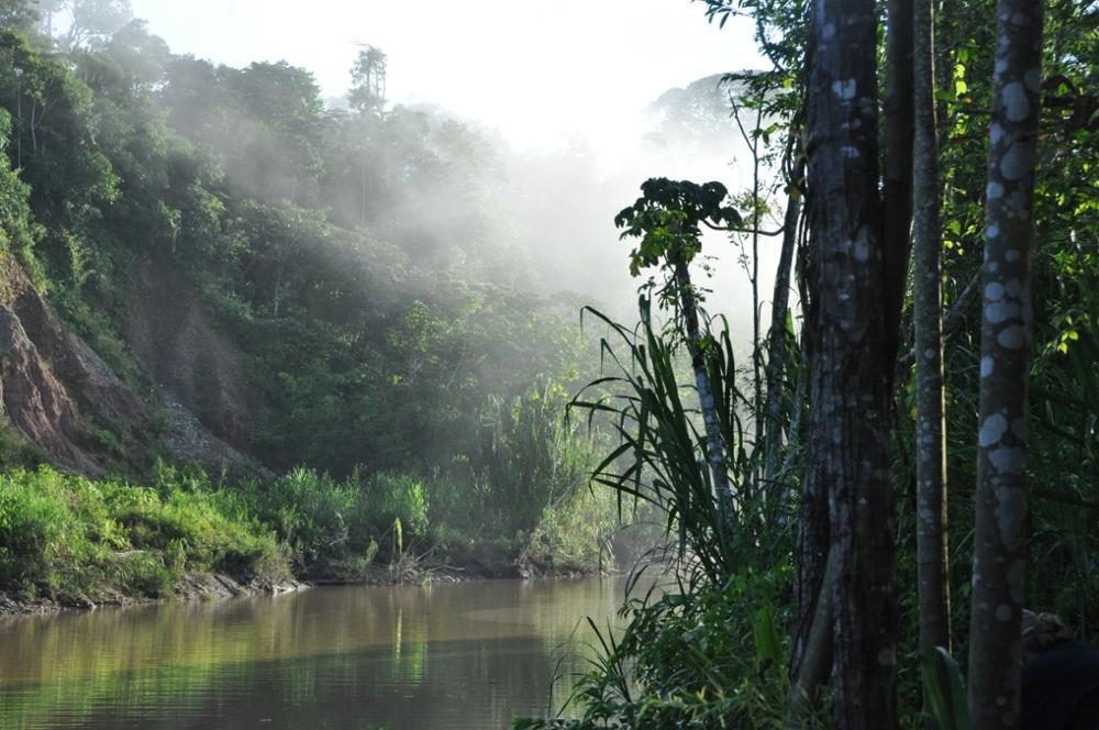 San Martin : une région Amazonienne en pleine résurrection